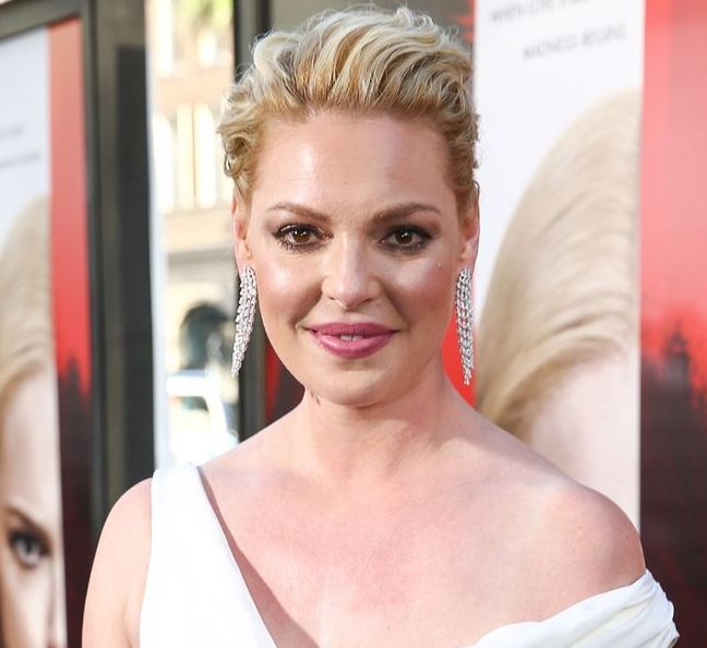Katherine Heigl Dyed Her Signature Blonde Hair Dark Brown and Looks Completely Different