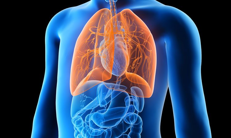 Queen's University team in cystic fibrosis breakthrough